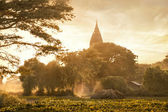 Amazing golden sunset at Bagan Kingdom, Myanmar (Burma) — Stock Photo