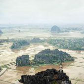 Rice fields, limestone rocks view from Hang Mua Temple. Ninh Binh, Vietnam — Stock Photo