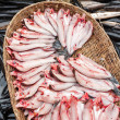 Raw fresh fish for sale at asian food market — Stock Photo