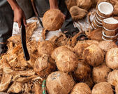 Seller opens tropical coconuts — Stock Photo