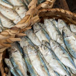 Raw fresh seafood, fish and clams for sale — Stock Photo