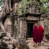 Buddhist monks at Angkor Wat. Siem Reap, Cambodia — Stock Photo