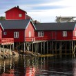 Wooden house at Lofoten archipelago — Stock Photo #13772931