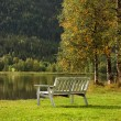 Bench on a lawn — Stockfoto