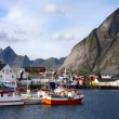 Lofoten Bay — Stock Photo #14733167