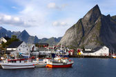 Lofoten Bay — Stock Photo