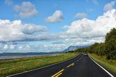 Coastline road — Stock Photo