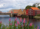Trondheim buildings — Stock Photo