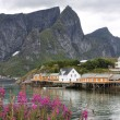 Wooden house at Lofoten archipelago — Stock Photo #21544149