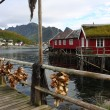 Wooden house at the Lofoten archipelago — Stock Photo