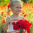 Girl with poppies — Stock Photo #28434687