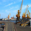 Seaport cranes — Stock Photo