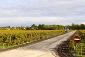 Private vineyard and tractor — 图库照片