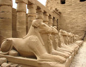 Egypt — Stock Photo