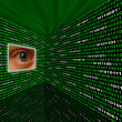 Spyware eye scanning binary code — Stock Photo