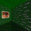 Stock Photo: Spyware eye scanning binary code