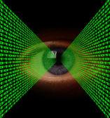 Optical Data Transfer — Stock Photo