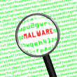 Magnifying glass locating malware in computer code — Stock Photo #37880197