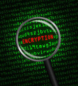"""ENCRYPTION"" revealed in computer code through a magnifying glas — Stock Photo"