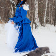 Girl in vintage dress in a snowy forest - Stock fotografie