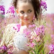 Beautiful young girl among the wildflowers — Stock Photo #29349917