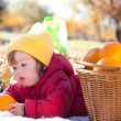 Stock Photo: Child on picnic. autumn