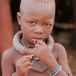 Himba boy, Namibia — Stock Photo #12657110