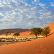 Stock Photo: Sossusvlei landscape