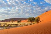 Sossusvlei landschap — Stockfoto
