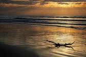 пейзаж на рассвете — Стоковое фото