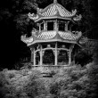 Chinese pagoda — Stock Photo #16181485