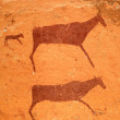 Bushmen rock painting — Stock Photo #19664957