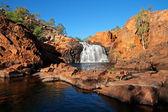 водопад, какаду np — Стоковое фото