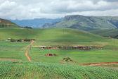 Rural settlement — Stock Photo