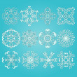 12 Vector Snowflakes — Stock Vector