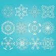 12 Vector Snowflakes — Stock Vector
