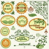 Etiqueta y añada elementos de diseño floral vector — Vector de stock