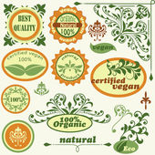 Vector label and vintage floral design elements — Stockvektor