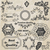 Vector Floral Design Elements — Stock Vector