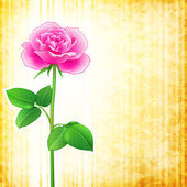 цветочный фон - роза — Cтоковый вектор