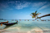 Palm and boats on tropical beach, Thailand — Stock Photo