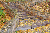 Autumn leaves on stone steps stairs — Stock Photo