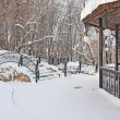 Forged bridge in winter forest — Photo