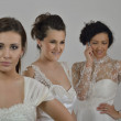 Portrait of a three beautiful woman in wedding dress — Stock Photo #11249292