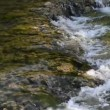 Stock Video: Clean fresh water in the nature