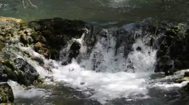 Clean fresh water in the nature — Stock Video