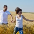 Happy couple in wheat field — Stock Photo #13123309