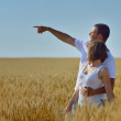 Happy couple in wheat field — Stock Photo #13149798