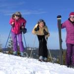 Winter season fun with group of girls — Stock Photo #13271183