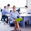 Business woman with her staff in background at office — Stock Photo #14456525